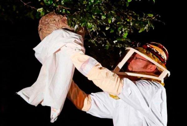 Уничтожение ос с помощью пакета и инсектицидного аэрозоля