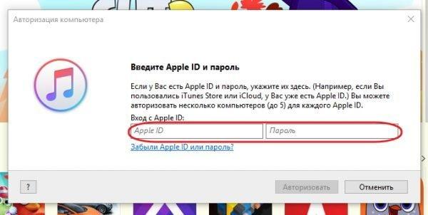 Идентификация в iTunes