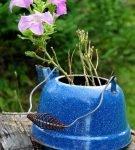 Старый чайник в качестве цветочного горшка