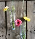 Цветы в бутылках