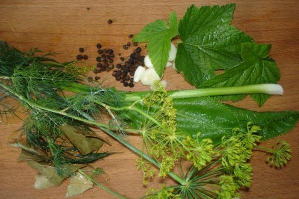 Листья смородины, укроп перец, чеснок