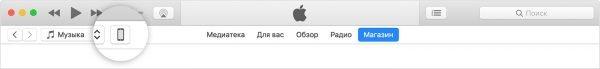 Значок устройства в iTunes