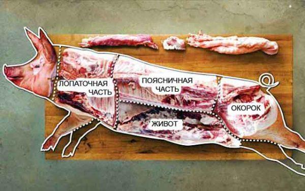Схема разделки свиной туши