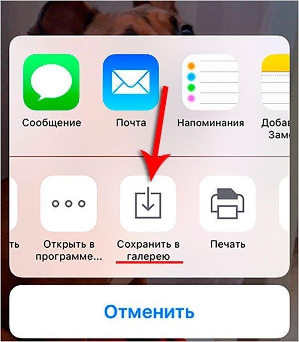 Сохранение фотографий на iPhone