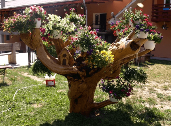 Сухое дерево с цветами