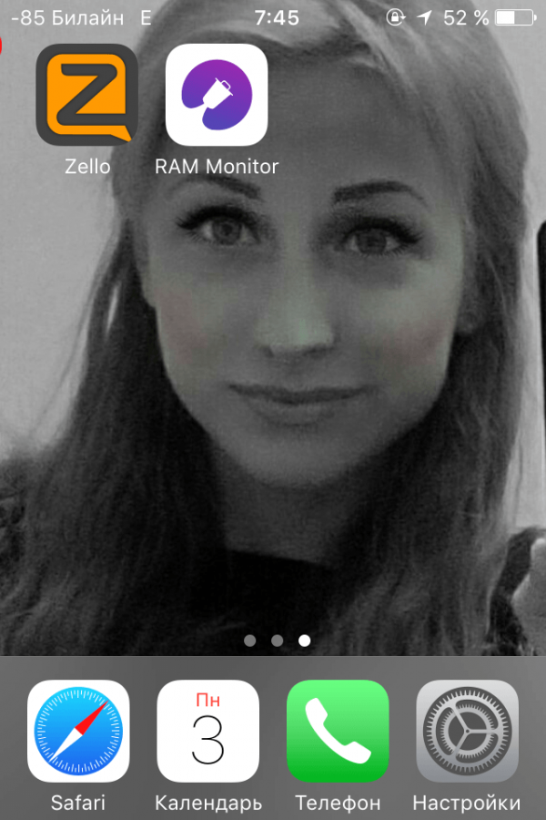 Значок программы RAM Monitor
