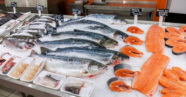 Охлаждённая рыба