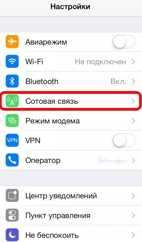 Раздел «Сотовая связь» в настройках телефона