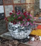 Габион с цветами