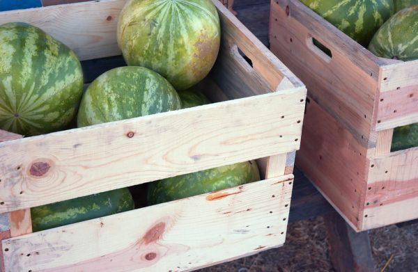 Арбузы в деревянных ящиках