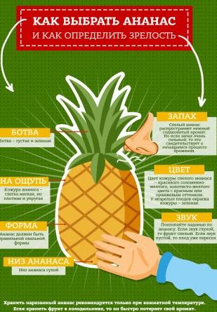 Как выбрать ананас — схема