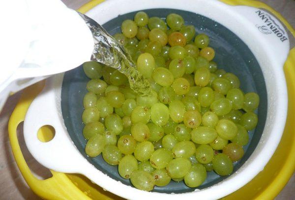 Виноградины, лежащие в ковше, поливают из чайника