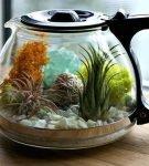 Флорариум в чайнике