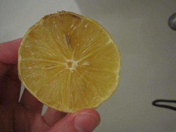 Лимон с краской