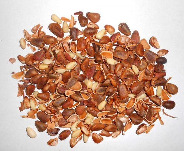 Чистка кедрового ореха