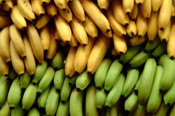 Зелёные и жёлтые бананы на прилавке