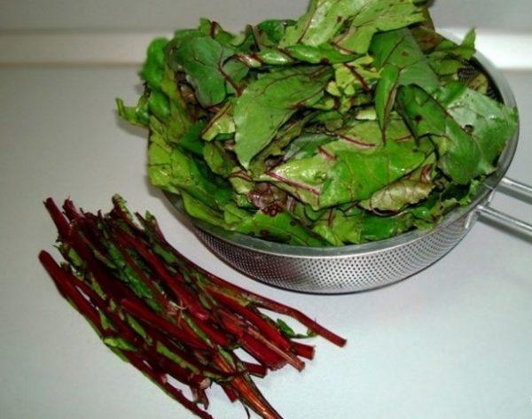 Стебли и листья свекольной ботвы