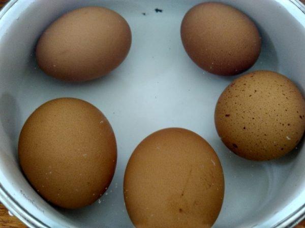 Куриные яйца в ёмкости с водой