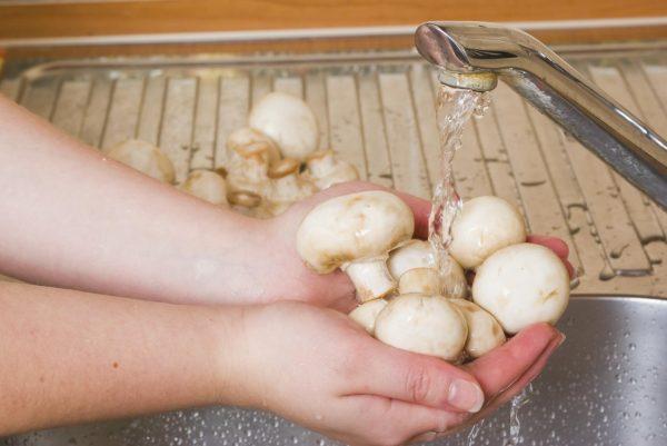 Промывка грибов