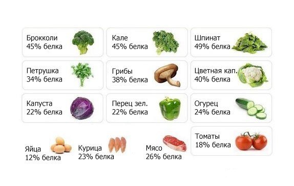 содержание белка в разных продуктах