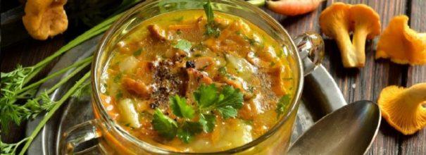 Грибной суп из свежих грибов