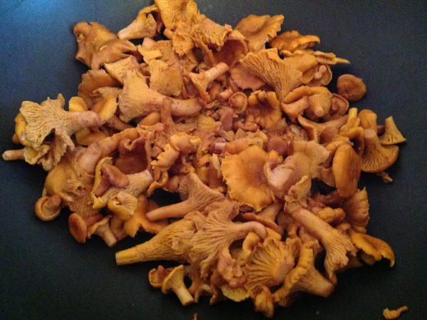 Лесные грибы в большом сотейнике