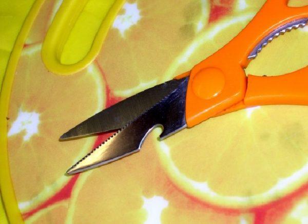 ножницы для чистки рыбы