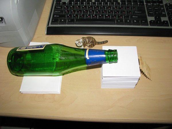 Живоловка из стеклянной бутылки
