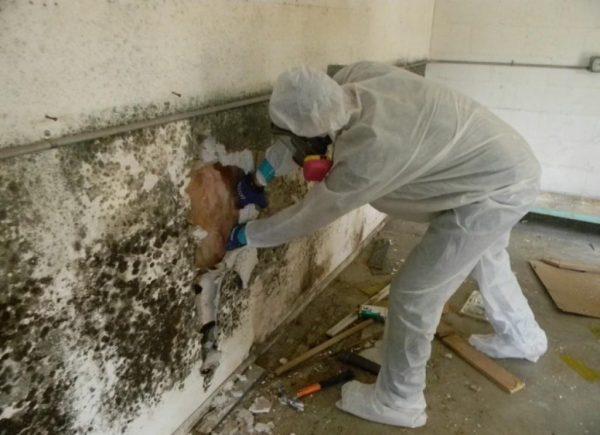 Снимают повреждённую штукатурку со стен