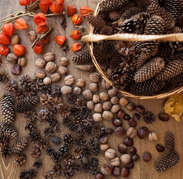 Природные материалы для декорирования праздничного венка