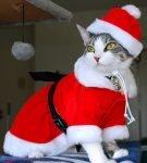 Костюм «Санта Клаус»