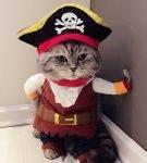 Костюм «Пират»