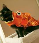 Костюм «Золотая рыбка»