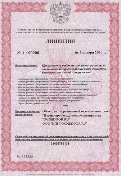 Лицензия ГУ МЧС РФ