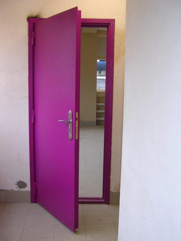 Цветная одностворчатая тамбурная дверь