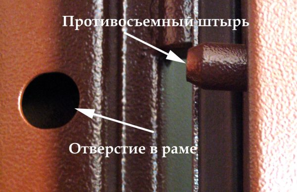 Противосъёмные штыри входной двери