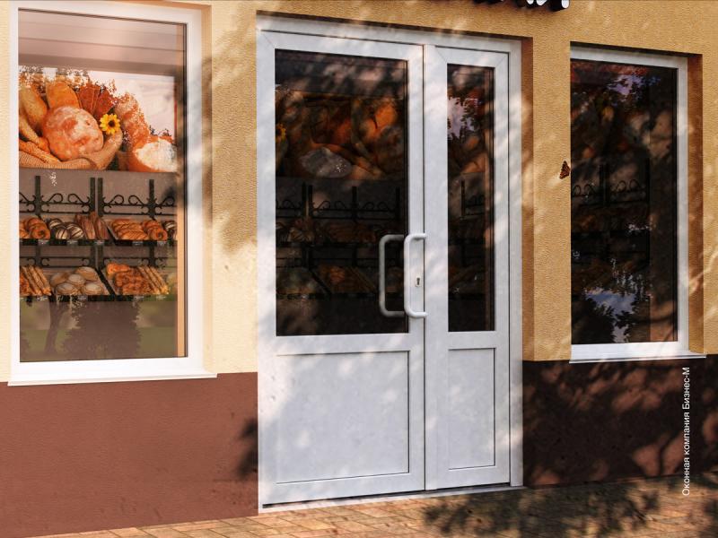Какие входные пластиковые двери лучше поставить