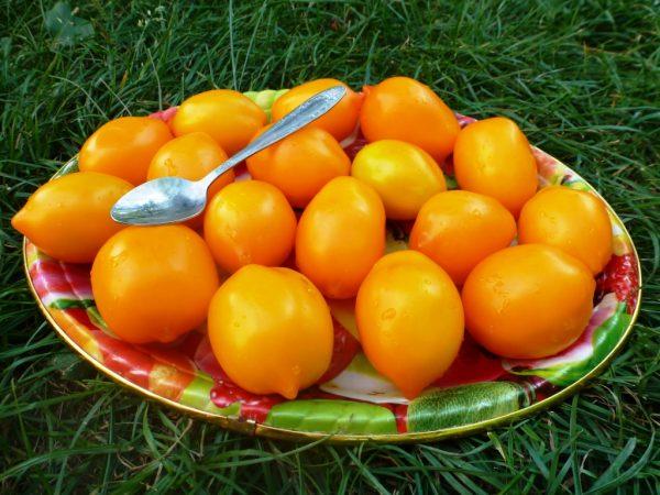 Плоды томата Чудо света