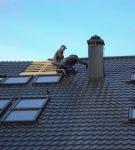 Крыша из тёмной металлочерепицы
