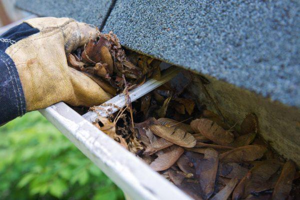 Очистка крыши от листьев