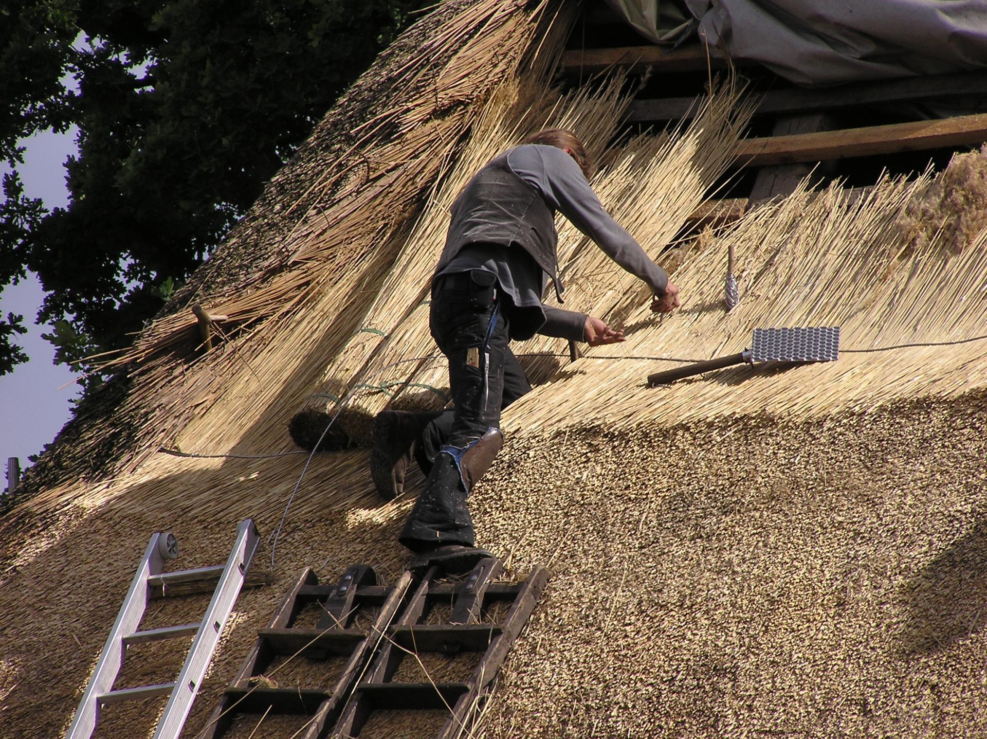 Технология укладки камыша на крышу фото подробное