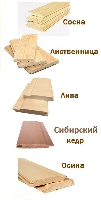 Вагонка из разных пород древесины