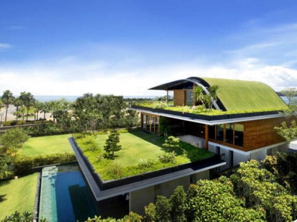 Эксплуатируемая крыша с зелёной зоной