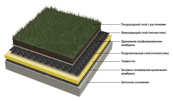 Схема устройства крыши подземного гаража