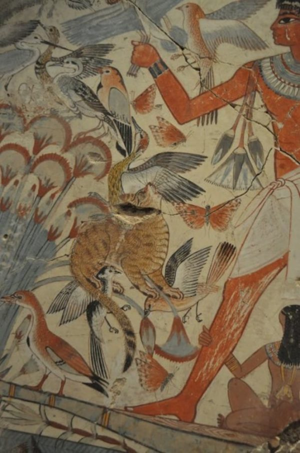 Охота кота на птиц в Древнем Египте