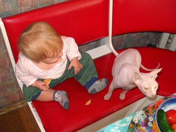 сфинкс и ребёнок