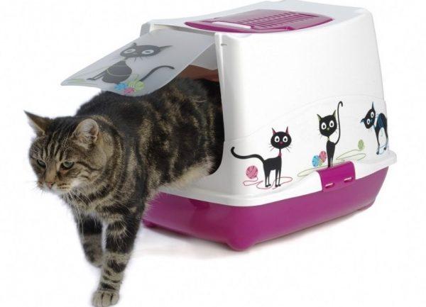 Евротуалет для кота