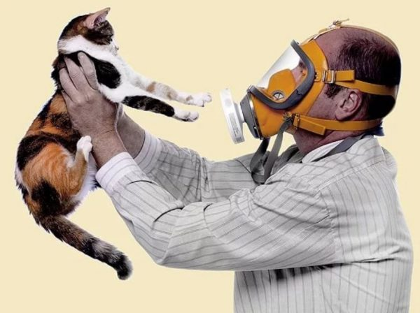 Человек в маске держит кота