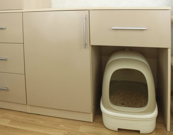 Туалет для кошки в коридоре