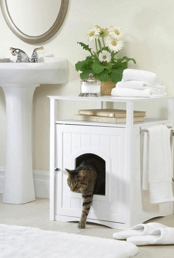 Туалет для кошки в ванной